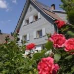 Bild Mehrfamilienhaus